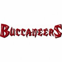 Tampa Bay Buccaneers Script Logo  Light Iron-on Stickers (Heat Transfers) Vesion 2