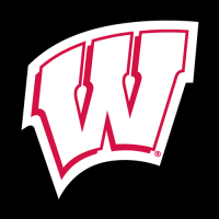 1991-Pres Wisconsin Badgers Alternate Logo Light Iron-on Stickers (Heat Transfers)