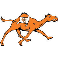 Campbell Fighting Camels 2008-Pres Alternate Logo Light Iron-on Stickers (Heat Transfers)