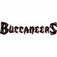 Tampa Bay Buccaneers Script Logo  Light Iron-on Stickers (Heat Transfers) Vesion 1