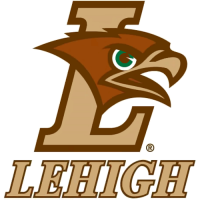 2004-Pres Lehigh Mountain Hawks Alternate Logo Light Iron-on Stickers (Heat Transfers)