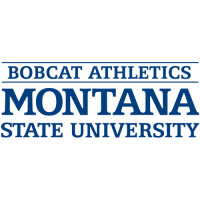 1997-Pres Montana State Bobcats Wordmark Logo Light Iron-on Stickers (Heat Transfers)