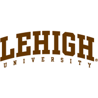 2004-Pres Lehigh Mountain Hawks Wordmark Logo Light Iron-on Stickers (Heat Transfers)