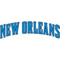 New Orleans Hornets Script Logo  Light Iron-on Stickers (Heat Transfers)