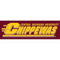 Central Michigan Chippewas 1997-Pres Wordmark Logo Light Iron-on Stickers (Heat Transfers)