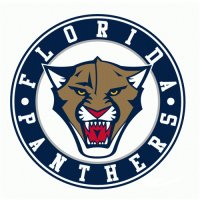 Florida Panthers Alternate Logo  Light Iron-on Stickers (Heat Transfers) version 1