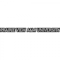 2011-Pres Prairie View A&M Panthers Wordmark Logo Light Iron-on Stickers (Heat Transfers)