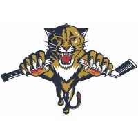 Florida Panthers Alternate Logo  Light Iron-on Stickers (Heat Transfers) version 4