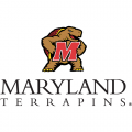 2001-Pres Maryland Terrapins Alternate Logo Light Iron-on Stickers (Heat Transfers)