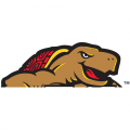1997-Pres Maryland Terrapins Partial Logo Light Iron-on Stickers (Heat Transfers)