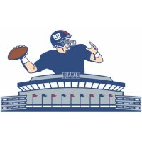New York Giants Alternate Logo  Light Iron-on Stickers (Heat Transfers)