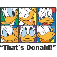 Donald Duck Light Iron On Stickers (Heat Transfers) version 21