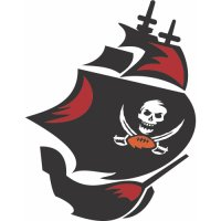 Tampa Bay Buccaneers Alternate Logo  Light Iron-on Stickers (Heat Transfers) version 2
