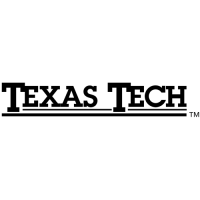 2000-Pres Texas Tech Red Raiders Wordmark Logo Light Iron-on Stickers (Heat Transfers)
