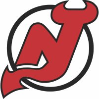 New Jersey Devils Primary Logo  Light Iron-on Stickers (Heat Transfers)