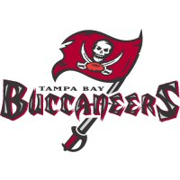 Tampa Bay Buccaneers Alternate Logo  Light Iron-on Stickers (Heat Transfers) version 1