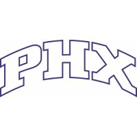 Phoenix Suns Script Logo  Light Iron-on Stickers (Heat Transfers) version 3